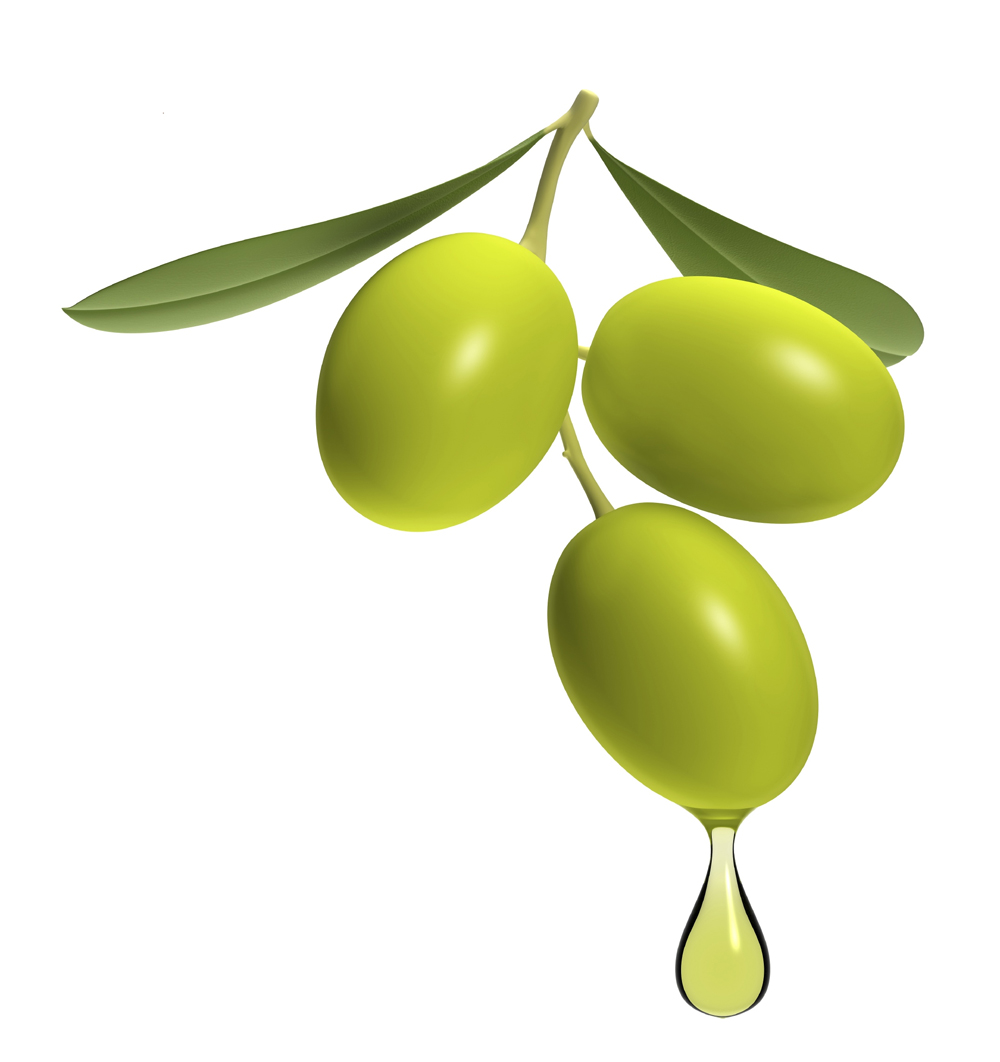 Olive branch with drop of oil isolated on white.